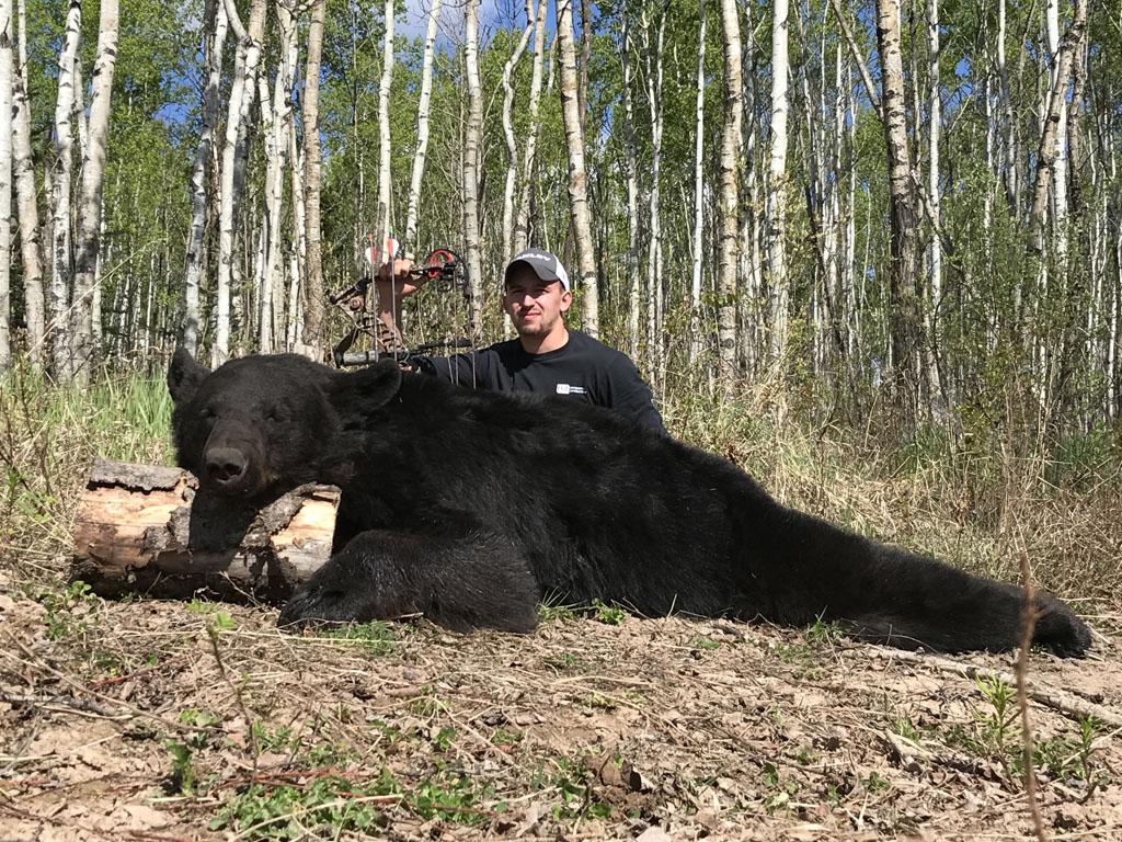Canada Black Bear Hunting