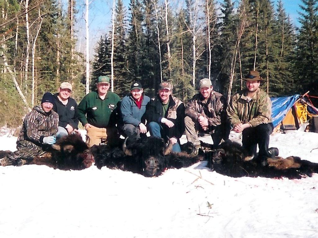 free range bison hunts