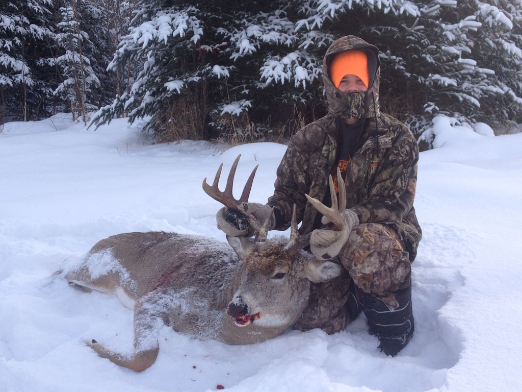 alberta whitetail hunts