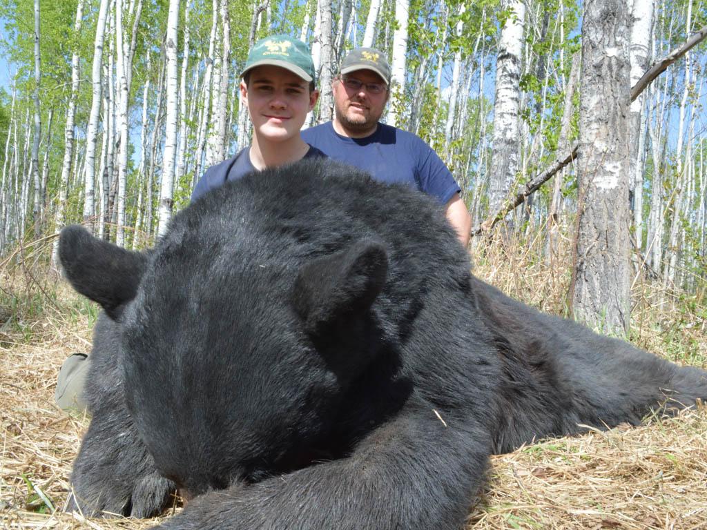 Alberta Canada Hunting Outfitters Black Bear Moose Bison