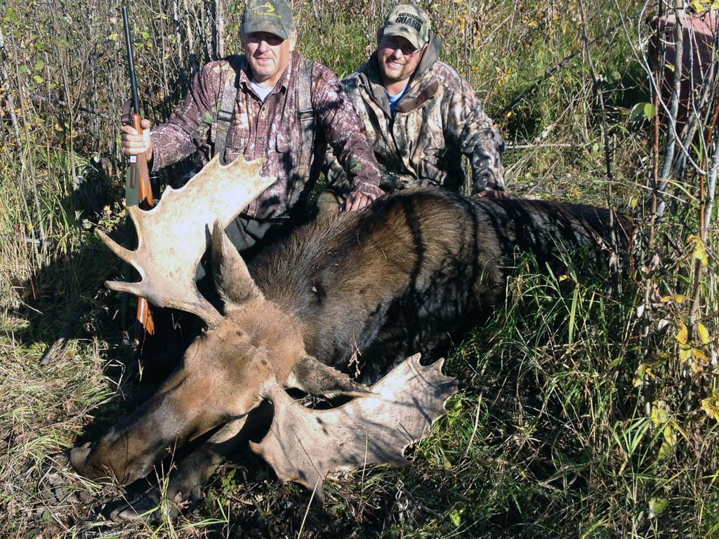 moose hunting alberta